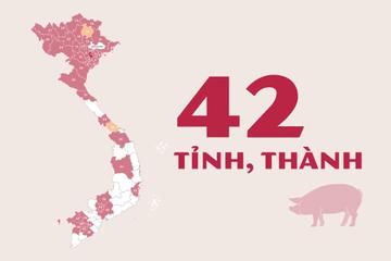 [Infographic] Những tỉnh, thành nào đã xuất hiện dịch tả lợn châu Phi?