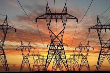 Tư vấn Xây dựng Điện 2 phát hành 2,5 triệu cổ phiếu trả cổ tức