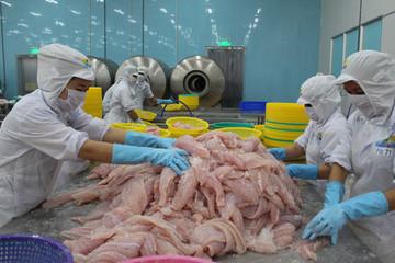 Bộ trưởng Nguyễn Xuân Cường: Xuất khẩu thủy sản 2019 có thể đạt 9 tỷ USD
