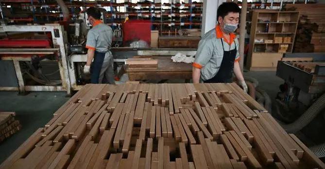 Nhà nhập khẩu gỗ của Trung Quốc khốn khổ vì chiến tranh thương mại