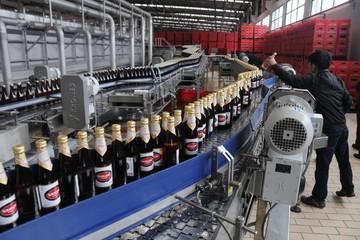 Sabibeco đặt kế hoạch lãi gần 136 tỷ đồng, giảm hơn 23%