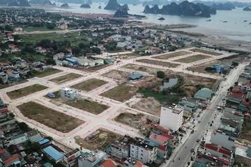 Kiểm tra công tác quản lý Nhà nước về nhà ở và thị trường BĐS tại Quảng Ninh