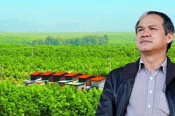 HNG bán cao su Đông Dương cho Thadi