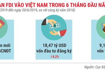 Những điểm nhấn về thu hút đầu tư nước ngoài trong 6 tháng 2019