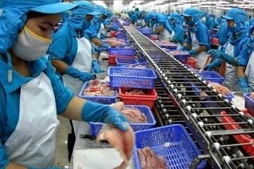 Lãi 6 tháng của Thủy sản Mekong vượt 6% kế hoạch năm