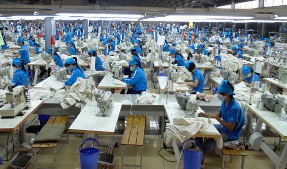 TNG báo lãi quý II gần 56 tỷ đồng, tăng 23%