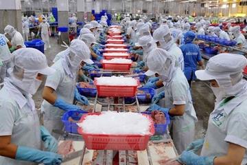 Thủy sản Nam Việt lãi 353 tỷ nửa đầu năm, tăng 82%