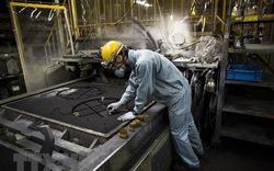 Việt Nam đứng thứ ba về xuất khẩu lao động sang Nhật