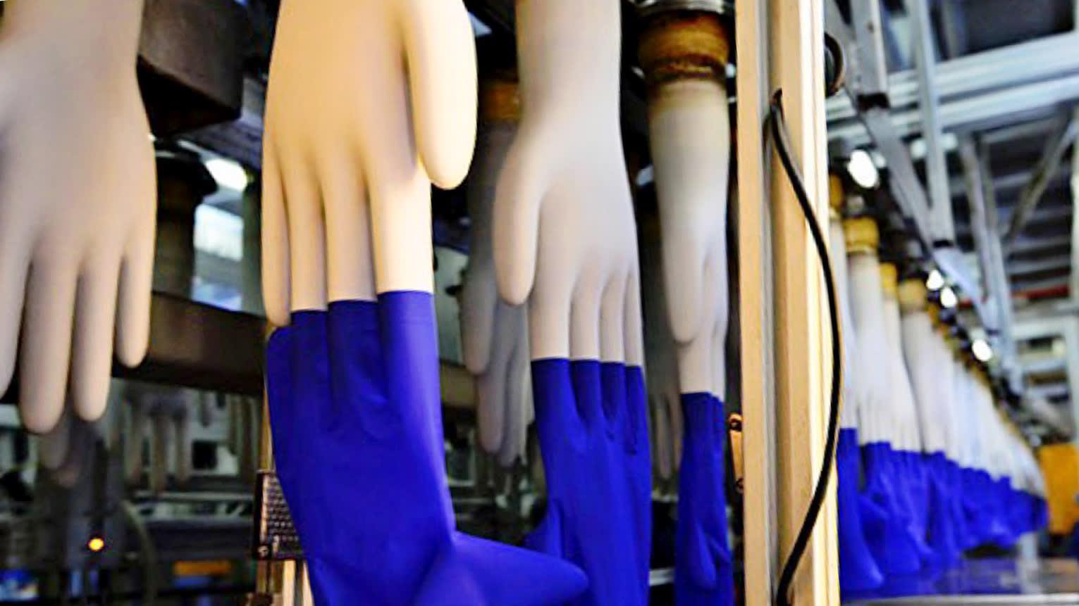 Hãng găng tay lớn nhất thế giới sắp mở nhà máy tại Việt Nam