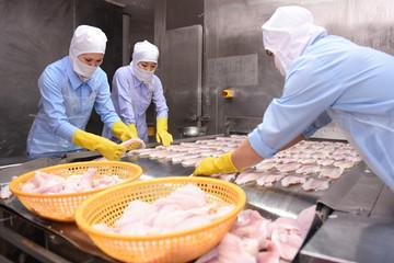 Lợi nhuận hoạt động chính của PAN tăng 30% trong nửa đầu 2019