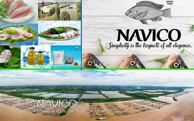 ANV xuất khẩu tháng 7 tăng 25%, đối tác Trung Quốc vẫn đặt hàng