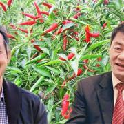 Ông Trần Bá Dương mua 50 triệu cổ phiếu HNG