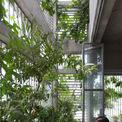<p> Đội ngũ thiết kế đã đưa ra nhiều giải pháp để biến ngôi nhà trong ngõ nhỏ trở thành một không gian mở, nhiều ánh sáng.</p>