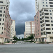 Người dân TP HCM tham gia đấu giá căn hộ tái định cư
