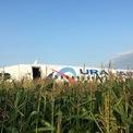 <p> Máy bay Ural Airlines Airbus 321 đã phải hạ cánh khẩn cấp xuống cánh đồng ngô gần Sân bay Quốc tế Zhukovsky tại Nga sau khi đâm phải một đàn chim. Không có ai thiệt hại trong sự cố này. Ảnh: <em>Reuters</em>.</p>