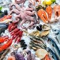 Xuất khẩu tháng 7: Tôm phục hồi, cá tra giảm hơn 50% tại Mỹ