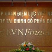 2 nhà đầu tư đăng ký mua 16,25 triệu cổ phần EVN Finance từ EVN