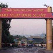 Quảng Ninh thu hồi gần 15 ha đất của Than Núi Béo