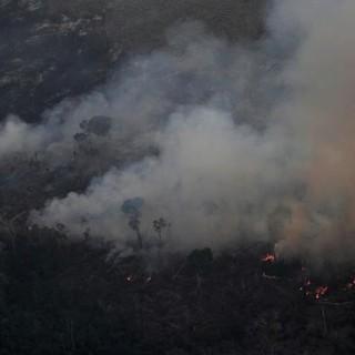 Thế giới tuần qua: Khói lửa bao trùm rừng Amazon, G7 'nóng' chuyện căng thẳng thương mại Mỹ - Trung