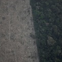 <p> Quang cảnh một phần của rừng Amazon bị phá hủy gần Porto Velho, bang Rondonia, Brazil vào ngày 21/8. Ảnh: <em>Reuters</em>.</p>
