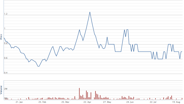 Diễn biến giá cổ phiếu PPI từ đầu năm. Nguồn: VNDS