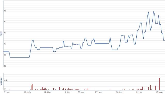 Diễn biến giá cổ phiếu VNT từ đầu năm. Nguồn: VNDS