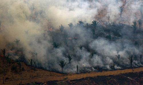 G7 chi hơn 20 triệu USD chữa cháy rừng Amazon