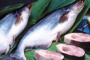 Doanh số xuất khẩu Vĩnh Hoàn giảm 23% trong tháng 7