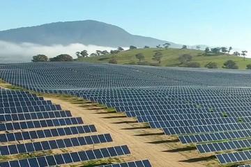 Doanh nghiệp Đức xin cơ chế triển khai 2 dự án điện mặt trời tại Đắk Lắk