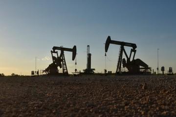 Lo ngại bão vào bang Florida làm giảm sản lượng, giá dầu tăng