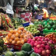 Hơn 176.000 tấn trái cây, rau củ Trung Quốc nhập về chợ đầu mối
