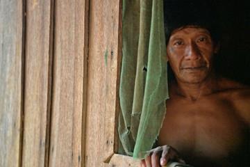 Xung đột văn hóa tại Amazon - Khi cao bồi lấn dần sang đất dân bản địa
