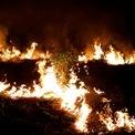 <p> Đám cháy tại một khoảng rừng Amazon thuộc Porto Velho, bang Rondonia, Brazil vào ngày 12/9. Theo số liệu của chính phủ Brazil số vụ cháy rừng tại Amazon tăng 83% trong năm nay và chưa có dấu hiệu ngừng lại.</p> <p> Chiến tranh thương mại Mỹ - Trung được cho là một trong những nguyên nhân khiến nông dân tại Brazil đẩy mạnh hoạt động chặt và đốt rừng để làm chăn nuôi - trồng trọt, đáp ứng nhu cầu tăng lên từ Trung Quốc. Ảnh: <em>Reuters</em>.</p>