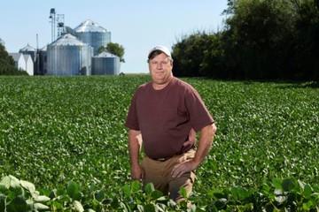 Lợi thế quy mô giúp nông dân Mỹ vượt qua thương chiến với Trung Quốc thế nào?