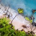 """<p class=""""Normal""""> <strong>'Tuvalu dưới thủy triều' - Sean Gallagher, Tuvalu, giải <em>Biến đổi môi trường</em></strong></p> <p class=""""Normal""""> Cây đổ rạp trước những con sóng tại bãi biển Tuvalu. Xói mòn đất luôn là mối đe dọa với quốc gia Nam Thái Bình Dương và đang trở nên nghiêm trọng hơn do nước biển dâng. Mực nước dâng cao có thể hoàn toàn nhấn chìm hòn đảo này.</p>"""
