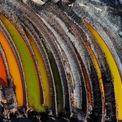 """<p class=""""Normal""""> <strong>'Tàn dư của rừng' - J Henry Fair, Niederzier, Đức, giải <em>Hành động khí hậu và năng lượng</em></strong></p> <p class=""""Normal""""> Khu rừng Hambach gần 12.000 năm tuổi được mua bởi một công ty điện lực để khai thác than nâu . Khu rừng cổ xưa từng có kích thước bằng Manhattan, giờ chỉ còn lại 10%.</p>"""