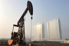 Tồn kho tại Mỹ tăng, giá dầu giảm 2%