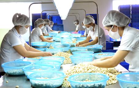 Donafoods lên UPCoM với giá 7.400 đồng/cp