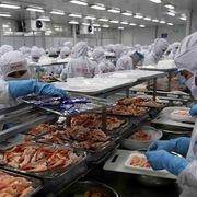 Tín hiệu lạc quan về hoạt động xuất khẩu của Việt Nam sang Trung Quốc
