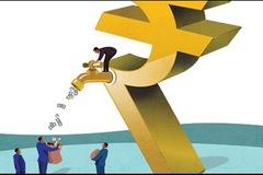 Transimex sắp trả cổ tức tiền và cổ phiếu tỷ lệ 25%