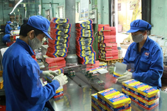 Pin Con Thỏ tạm ứng cổ tức 15%, tăng kế hoạch lợi nhuận 2019