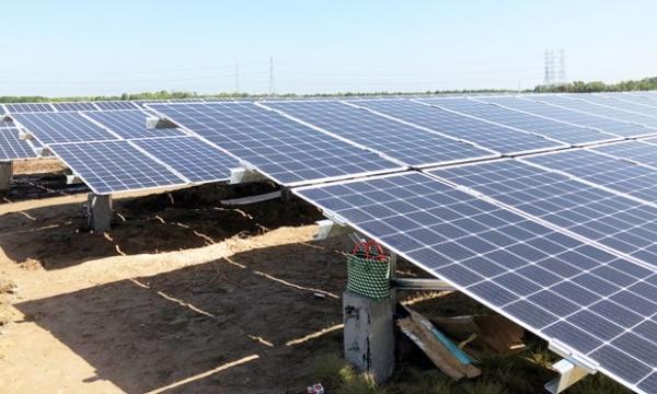 Dự án điện mặt trời, gió Ninh Thuận có thể thiệt hại gần 480 tỷ đồng do quá tải lưới