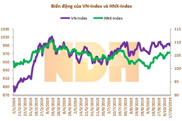 Biến động của VN-Index và HNX-Index từ đầu năm.