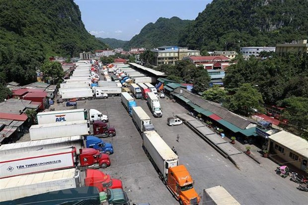 Hàng trăm container hàng hóa sang Trung Quốc ùn ứ