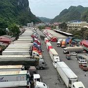 Hàng trăm container thanh long tắc ở cửa khẩu Tân Thanh