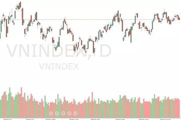 Xu thế dòng tiền: Khó có sóng quý III, thị trường trông đợi điều gì?