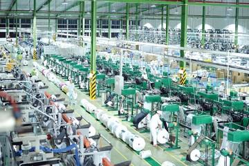 Lãi Nhựa An Phát Xanh tăng 49% trong quý III