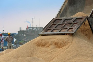 Reuters: Trung Quốc miễn thuế cho 10 triệu tấn đậu tương Mỹ