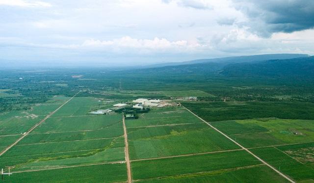 vung-nguyen-lieu-organic-tai-a-8380-3022