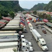Tăng thời gian làm việc để 'giải cứu' hàng trăm container ùn ứ tại cửa khẩu Tân Thanh